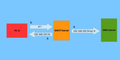 🇼🇸 8 лучших провайдеров динамического DNS для бесплатного использования