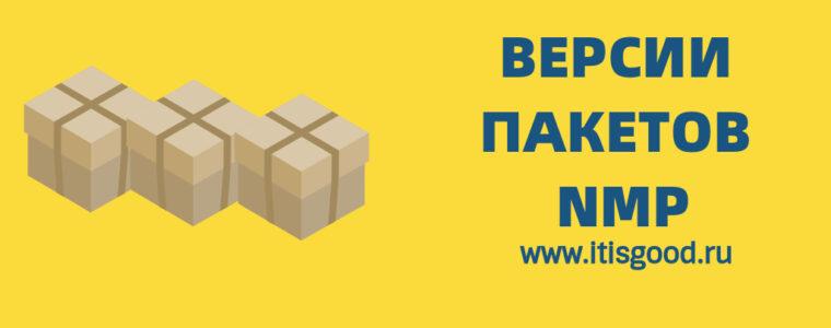 📦  Как найти установленную версию пакета npm