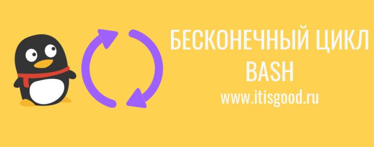 📜  Как создать бесконечный цикл в shell скрипте