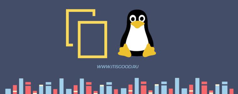 🐧 Как скопировать файл в несколько каталогов на Linux