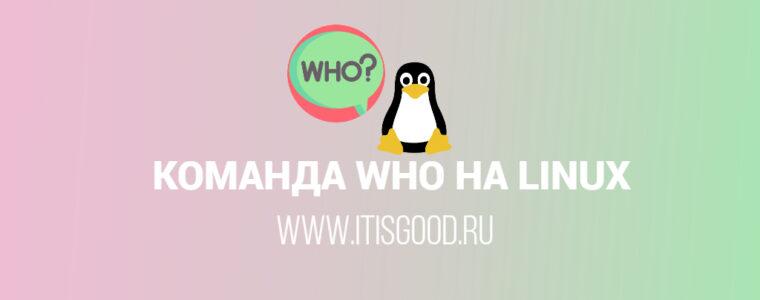 🐧 Команда who в системах Linux