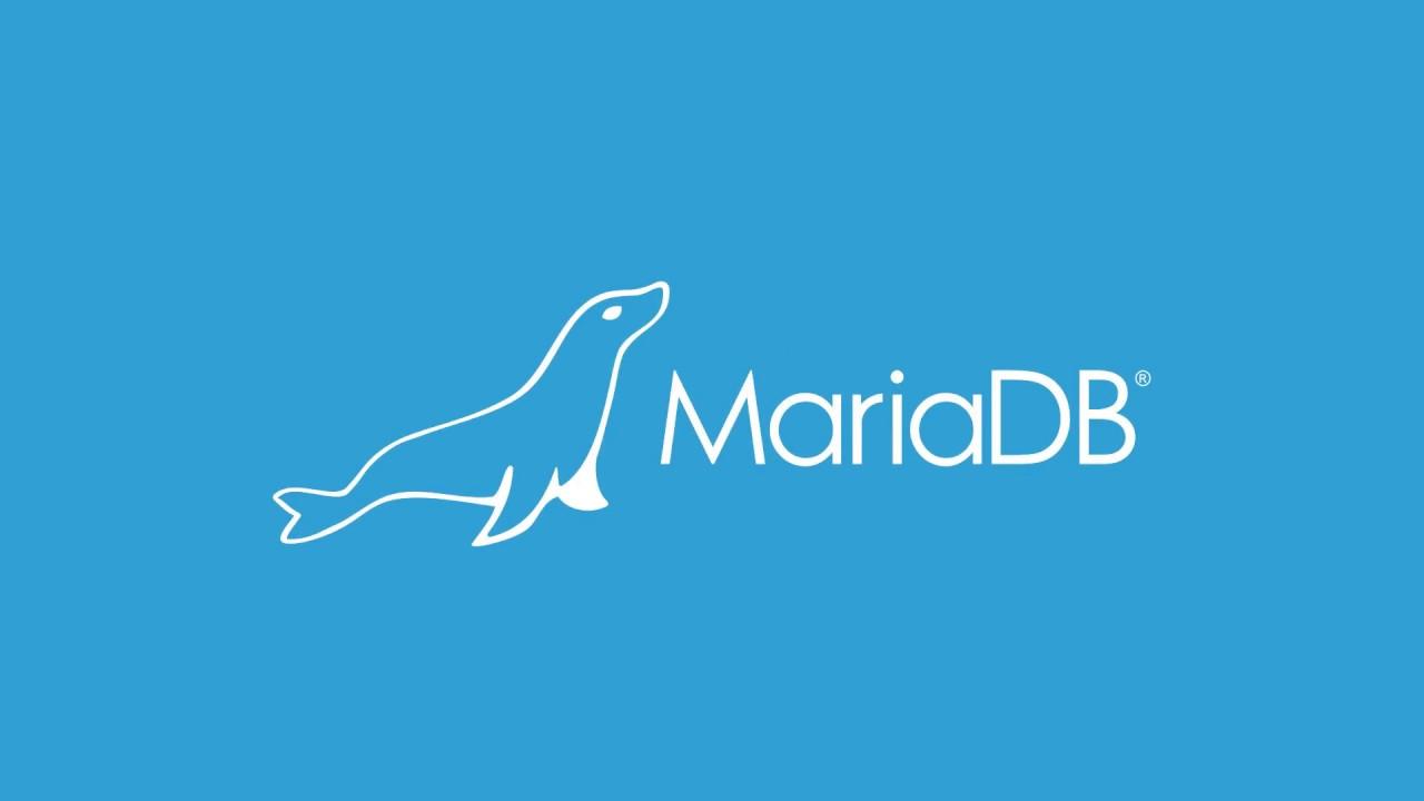 Как установить и использовать MariaDB на Ubuntu 18.04