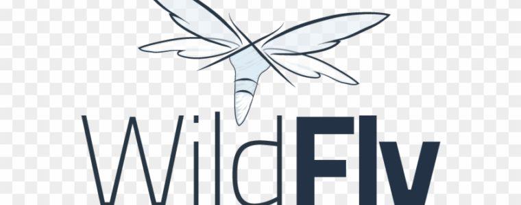 🆗  Установка сервера приложений WildFly (JBoss) в Ubuntu 18.04 / Debian 10/9