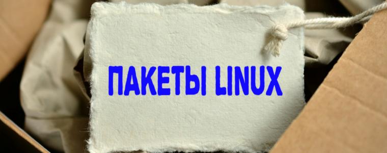 📦 Как проверить версию пакета Linux перед его установкой