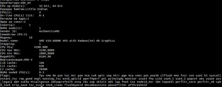 🐧 Как проверить версию Linux