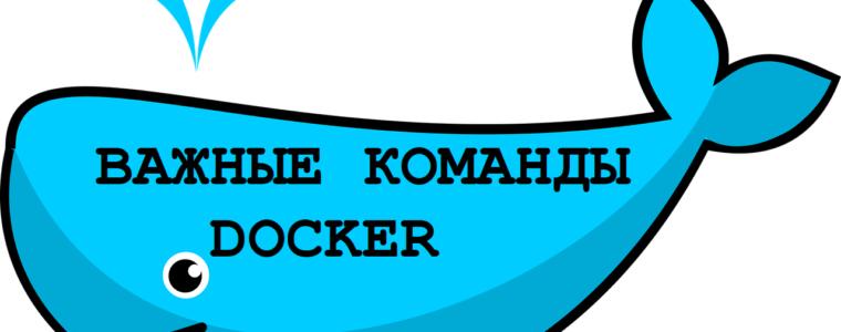 🐳  Топ самых важных команд Docker