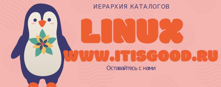📂 Понимание иерархии файловой системы Linux