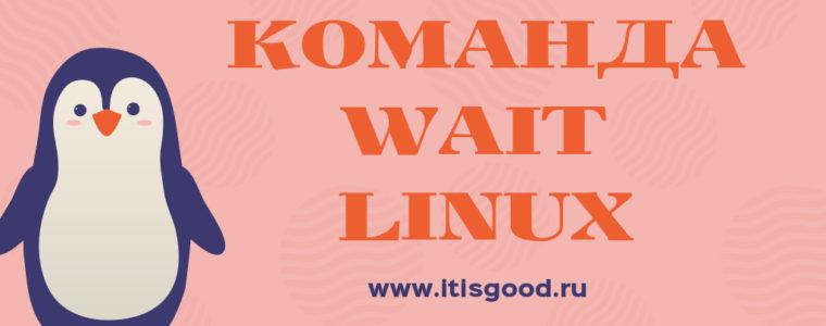 🐧 Команда wait в Linux с примерами